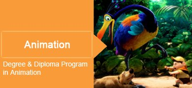Diploma in Animation Colleges in Bangalore